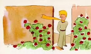 داستان شاهزاده کوچولو