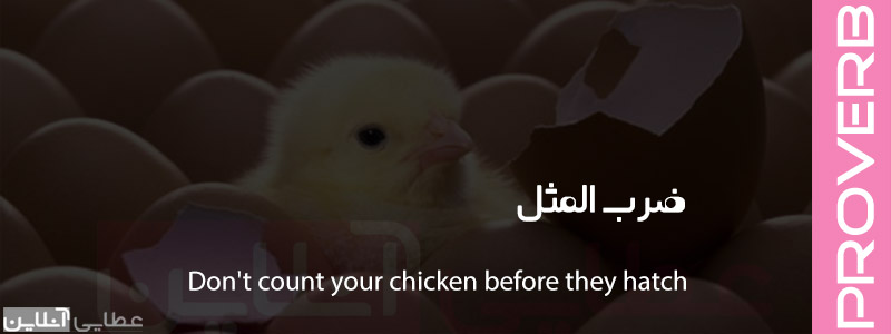 معنی ضرب المثل Don't count your chicken before they hatch