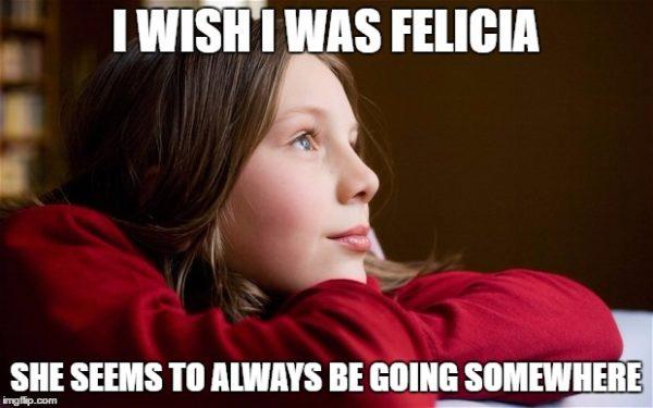 معنی Bye Felicia